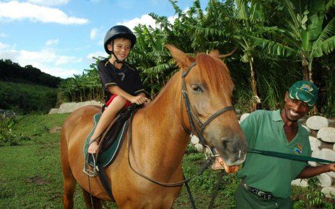 Pony Riding (Mac Banana)